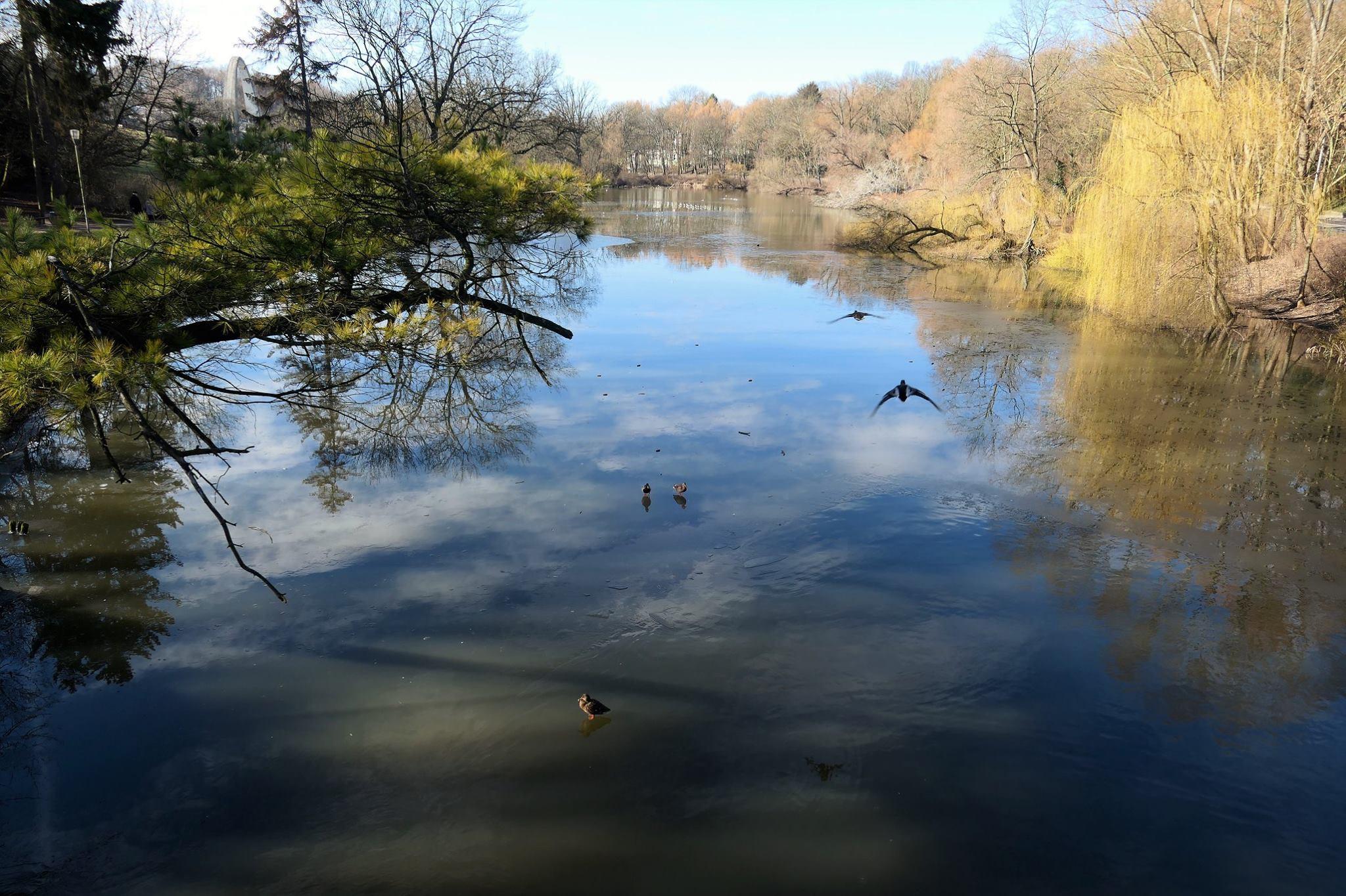 Der Rusałka See